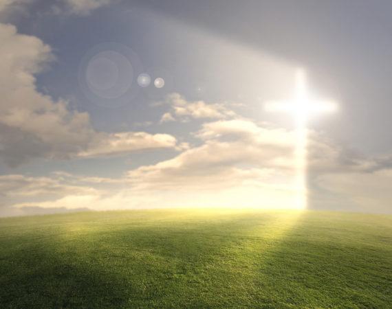 Żyć w światłości